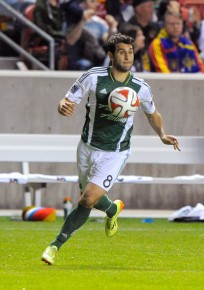 A healthy Diego Valeri would go a long way in the Portland Timbers reclaiming a place in the MLS Playoffs in 2015 (Gene Sweeney Jr/Getty Images)